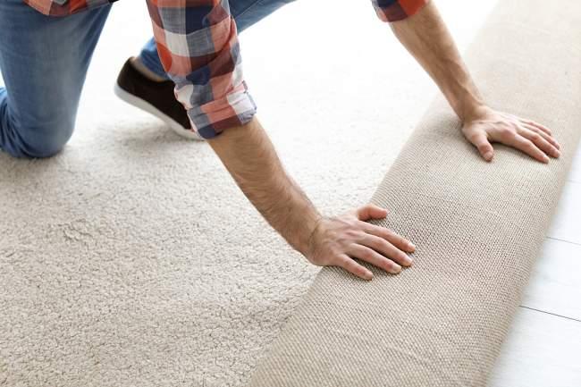 hoverboard on carpet